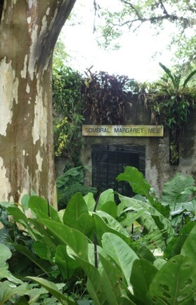 Margaret Mee memorial plant house at Sitio Roberto Burle Marx near Rio de Janeiro. Photograph by John Ryle
