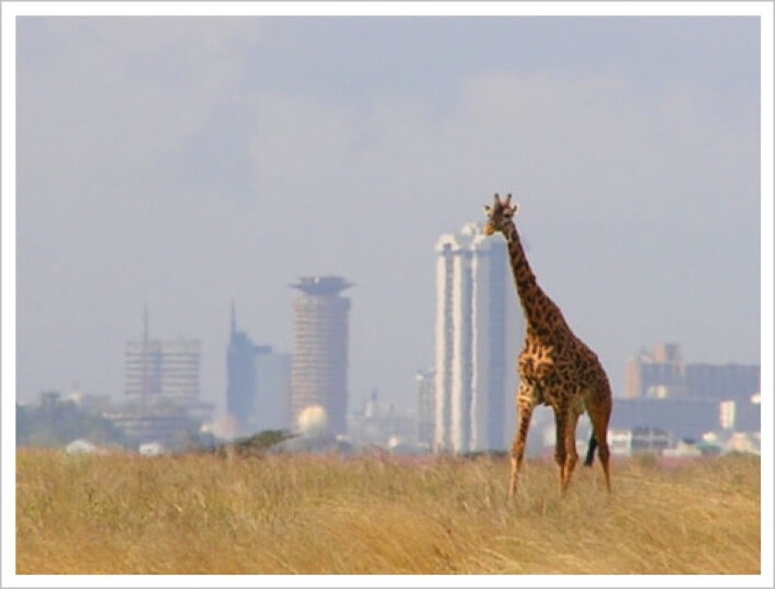 Hard times for the Kenyan tourist trade